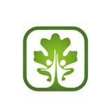 Icono del árbol de los pares del App Imágenes de archivo libres de regalías