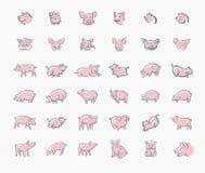 Icono del bosquejo del cerdo fijado para la web, el móvil y el infographics Icono dibujado mano del cerdo Icono del vector del ce ilustración del vector