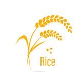 Icono del cereal con arroz stock de ilustración