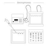 Icono del esquema de la electroforesis Foto de archivo