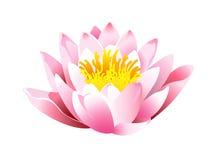 Icono del loto Fotos de archivo libres de regalías