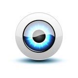 Icono del ojo del vector Imagen de archivo libre de regalías