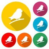 Icono del pájaro o silueta del logotipo, sistema de color con la sombra larga stock de ilustración