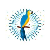 Icono del pájaro del Macaw Foto de archivo