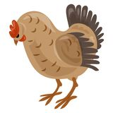 Icono del pollo, estilo de la historieta stock de ilustración