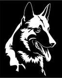 Icono del símbolo del perro de Dog Portrait Malinois del pastor ilustración del vector
