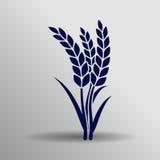 Icono del trigo Imagen de archivo libre de regalías