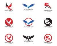 Icono del vector de Eagle Bird Logo Template del halcón stock de ilustración