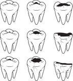 Icono del vector de la carie del diente contorno Imagen de archivo libre de regalías