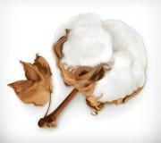 Icono del vector del algodón ilustración del vector