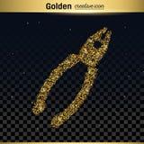 Icono del vector del brillo del oro Foto de archivo libre de regalías