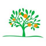 Icono hermoso de la silueta del árbol anaranjado fotografía de archivo