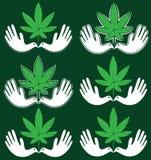 Icono médico de la hoja de la marijuana del cáñamo con símbolo pacífico de la paloma Foto de archivo