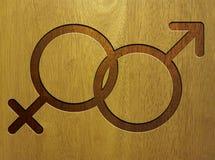 Icono masculino y femenino en la madera Foto de archivo libre de regalías
