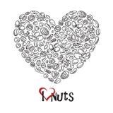 Icono Nuts como corazón Imagen de archivo
