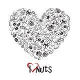 Icono Nuts como corazón Imagenes de archivo