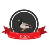 Icono plano del pato con nombre Imágenes de archivo libres de regalías