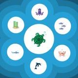 Icono plano Marine Set Of Tortoise, tiburón, Tuna And Other Vector Objects También incluye el cangrejo, tentáculo, elementos de l Imagen de archivo libre de regalías
