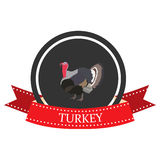 Icono plano Turquía con el nombre Imagenes de archivo