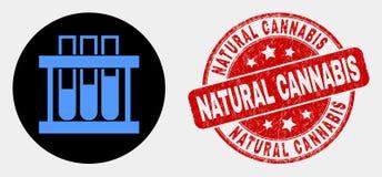 Icono químico de los tubos de ensayo del vector y apenar el sello natural del sello del cáñamo ilustración del vector