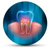 Icono seccionado transversalmente del diente ilustración del vector