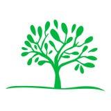 Icono verde de la silueta del ?rbol imagen de archivo libre de regalías
