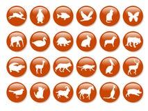 Iconos animales Imágenes de archivo libres de regalías