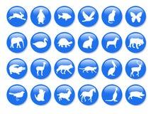 Iconos animales azules Fotos de archivo