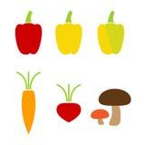 Iconos coloridos de las verduras Foto de archivo libre de regalías