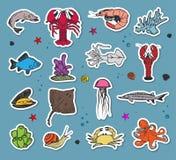 Iconos coloridos del seaworld del vector Imágenes de archivo libres de regalías