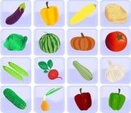 Iconos con las verduras Imagen de archivo libre de regalías