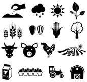Iconos de la agricultura Fotografía de archivo libre de regalías