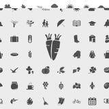 Iconos de la comida de la cosecha stock de ilustración
