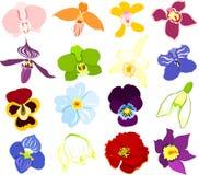 Iconos de la flor Foto de archivo