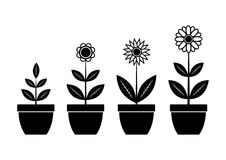 Iconos de la flor Foto de archivo libre de regalías