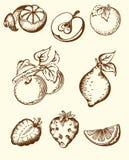 Iconos de la fruta de la vendimia Foto de archivo libre de regalías