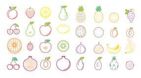 Iconos de la fruta tropical del verano para los anuncios y las banderas del fondo ilustración del vector