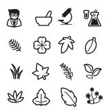 Iconos de la hierba fijados Fotos de archivo
