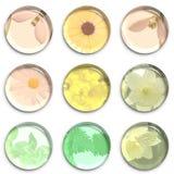 Iconos de la lente con las flores Foto de archivo