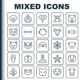 Iconos de la naturaleza fijados Colección de telaraña, oso, Kitten And Other Elements También incluye símbolos tal como el reptil ilustración del vector