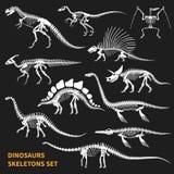 Iconos de la pizarra de los esqueletos de los dinosaurios fijados stock de ilustración