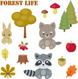 Iconos de la vida del bosque fijados Fotos de archivo