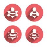 Iconos de las abejas de la miel Símbolos de los abejorros libre illustration