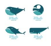 Iconos de las ballenas Imagen de archivo libre de regalías