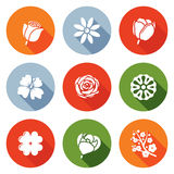 iconos de las flores fijados Ilustración del vector ilustración del vector