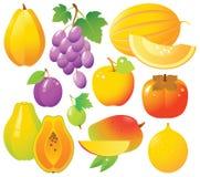 Iconos de las frutas frescas Foto de archivo libre de regalías