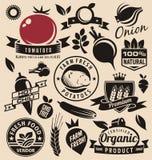 Iconos de las verduras, etiquetas, muestras, símbolos, disposiciones del logotipo y elementos del diseño Imagen de archivo