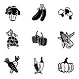 Iconos de las verduras y de las frutas fijados y muestras Imagen de archivo libre de regalías