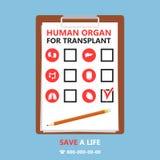 Iconos de los órganos internos Imagen de archivo libre de regalías