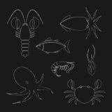 Iconos de los mariscos de la tiza fijados libre illustration